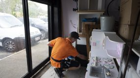 Gold Coast Commercial Pest Control - Process, Chemicals, Costs and Best Time of Year. Top dog pest Control