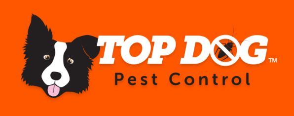 Top Dog Pest Control Gold Coast
